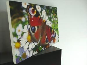Beispiel einer bedruckten Fotoleinwand